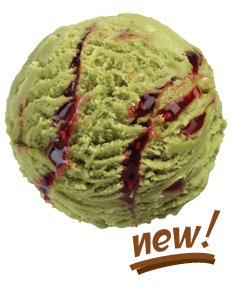 new-matcha-green-tea-icecream